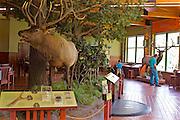 Northcentral Pennsylvania, Visitor's Center, Elk,  Winslow Overlook, Benezette, Elk County