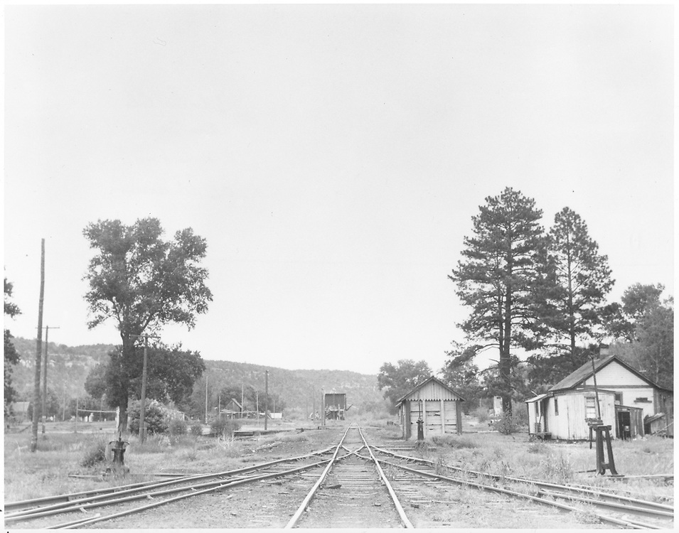 "View north in Dolores.  Wye is to right of RGS water tank ahead.  Alex Vigil's section house is to right.<br /> RGS  Dolores, CO  Taken by Richardson, Robert W. - 5/31/1947<br /> In book ""Rio Grande Southern II, The: An Ultimate Pictorial Study"" page 308"