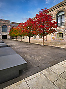 Gorgeous autumn colours of the trees at Royal William Yard. <br /> Plymouth, Devon, UK