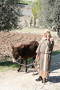 Israel, Galilee, Nazareth Village, re-enactment of Nazareth as Jesus knew it 2000 years ago Israelite villager in traditional dress with donkey in olive grove