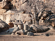 Food storage huts in Nyaro village, Kordofan region, Sudan
