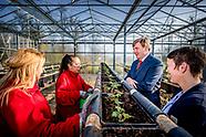 EVERDINGEN - Koning Willem Alexander brengt een werkbezoek aan Vitaal Dorp in Everdingen, deelnemer