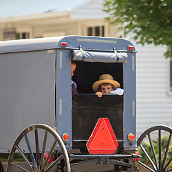 Amish boy look out the rear of a buggy.