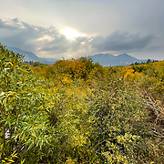 Wetlands near the base of Mammoth Mountain provide for a colorful foreground during peak leave turning time in October.