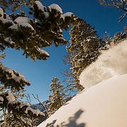 Tanner Flannagan skis blower cold smoke winter powder in the Tetons.