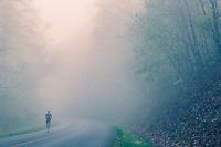 Woman ringing in fog on Blue Ridge Parkway.