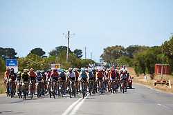 The peloton approach at Deakin University Elite Women Cadel Evans Road Race 2019, a 113 km road race starting and finishing in Geelong, Australia on January 26, 2019. Photo by Sean Robinson/velofocus.com