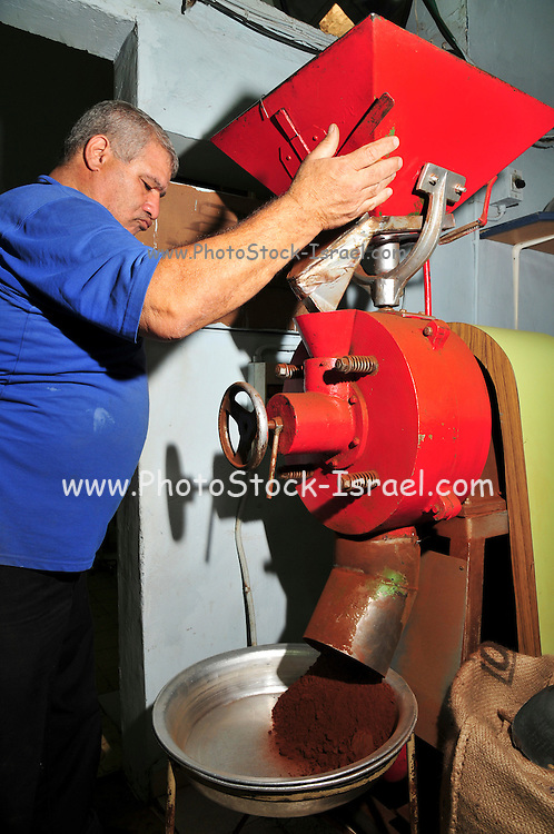 Israel, Nazareth, small coffee roasting shop worker grinds freshly roasted coffee beans