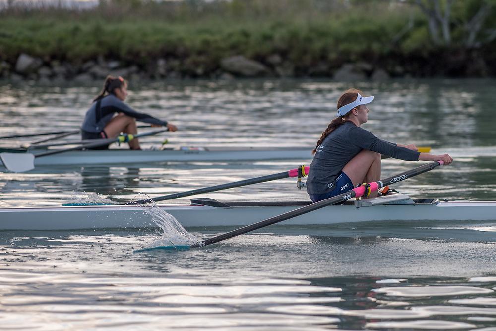 Shannon Cox, Avon Rowing Club<br /> <br /> SRPC squad training on the lower Waimakariri River, Stewarts Gully, Canterbury. Monday 19 November 2018 © Copyright photo Steve McArthur / @RowingCelebration