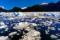 Icebergs and ice floes, LeConte Bay (near LeConte Glacier), between Petersburg and Wrangell, southeast Alaska USA