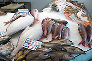 Fresh fish on ice at fishmongers at Playa Blanca, Lanzarote, Canary Islands, Spain