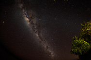 The kids are able to see the Milky Way while on the night time excursion.