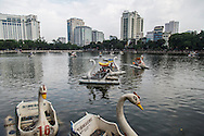 Swan paddle boats in Thu Le park, Hanoi, Vietnam, Southeast Asia