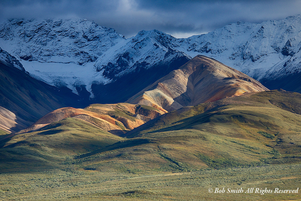 Sunset highlights the foothills in Denali National Park.