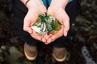 Young woman holding sea glass and shells found on beach.