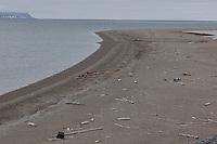 Kayaks on beach, Engelskbukta, Svalbard