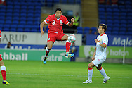 Neil Taylor of Wales.  Euro 2012 Qualifying match, Wales v Montenegro at the Cardiff City Stadium in Cardiff  on Friday 2nd Sept 2011. Pic By  Andrew Orchard, Andrew Orchard sports photography,