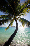 Mokulua Islands, Lanikai, Oahu, Hawaii
