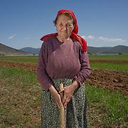 Todora Burmo (73) in her field near Kallamas, Albania