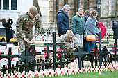 2014_11_05_poppies_soliders_SSI