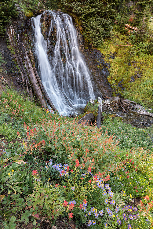 Wildflowers and waterfall, Wallowa Mountains, Oregon.