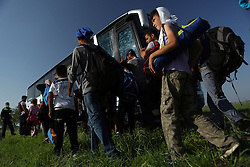 © Gabriel Szabo - Licensed to London News Pictures. More than a hundred migrants walk along the train tracks after caught by the Hungarian border force and police and boarded on buses to be taken to temporary camps on 2nd of September, 2015. Röszke is the centre of the migrant route leading to Hungary and where the far-right party Jobbik organised a demo against them. Photo credit : Gabriel Szabo/LNP