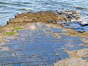 Permian and Triassic sandstone laid down 300-200 million years forms the Tessellated Pavement, on the Tasman Peninsula, Tasmania, Australia. The Tasman Sea (part of the South Pacific Ocean) washes over this curious natural checkerboard of blocky rock.