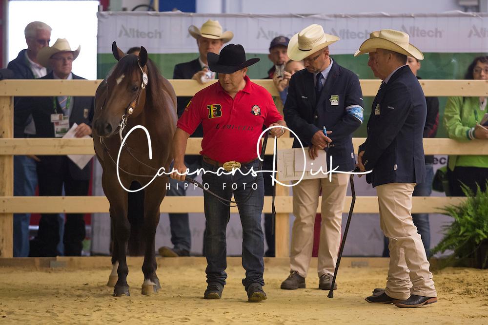 Piet Mestdagh, (BEL), RS Spat Mano War - Horse Inspection Reining  - Alltech FEI World Equestrian Games™ 2014 - Normandy, France.<br /> © Hippo Foto Team - Dirk Caremans<br /> 25/06/14
