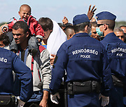 Hungarian police contain migrants close to the Hungarian and Serbian border town of Roszke, Hungary, September 7 2015. The UN's humanitarian agencies are on the verge of bankruptcy and unable to meet the basic needs of millions of people because of the size of the refugee crisis in the Middle East, Africa and Europe, senior figures within the UN have told the media.