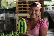 Feliciana Quintero, Ngäbe member of COOBANA, holds a fair-trade banana hand ready for export. COOBANA, Finca 51, Changuinola, Bocas del Toro, Panamá. September 3, 2012.