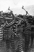 African-American convicts at Reed Camp, South Carolina, 1934,  working with axes and singing in woodyard.