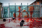 Activists take radical action throwing buckets of fake blood at Napier Barracks to highlight human rights violations on the 28th of January 2021 in Folkestone, United Kingdom. Activists dressed in white suits and masks, ​threw the fake blood​ through the gates of Napier Barracks to send a clear message to Priti Patel and the Home office to close Napier camp or​ ​there will be blood on your hands Following ongoing concerns over the poor living conditions at Napier barracks, and the failures in handling the inevitable Covid-19 outbreak onsite, pressure has been mounting on the Home Office to close the camp.