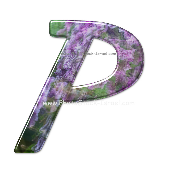 The Capitol Letter P Part of a set of letters, Numbers and symbols of 3D Alphabet made with a floral image on white background