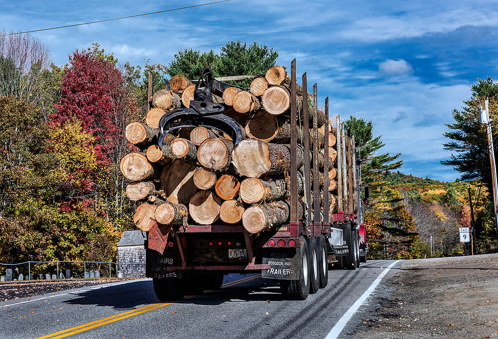 Truck hauling raw lumber harvested in Maine, USA