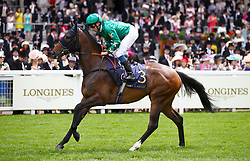 Aljazzi ridden by Jockey William Buick goes to post for the Duke Of Cambridge Stakes