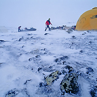 A polar expedition member gathers snow to melt for water.