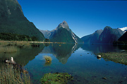 Milford Sound, New Zealand, showing waters edge and mountains