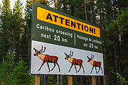 Caribou crossing sign, Jasper National Park, Alberta Canada