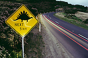 Beware - dinosaurs! A road sign close to Dinosaur Cove, a major fossil excavation in Australia. The sign, intended to warn of the presence of kangaroos, was altered by one of the volunteer workers at the site. Dinosaur Cove is the first mine devoted to paleontology, most excavations rely on existing commercial mines.  [1989].