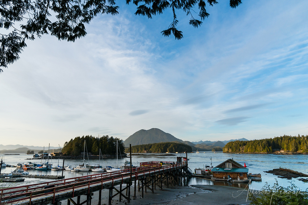Fishing dock, boats, and the Meares Island mountain landscape in the afternoon, in British Columbia, Canada