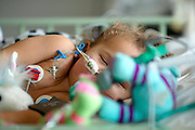 UK,London.<br /> St.Mary's Hospital,Paddington. Children's Intensive Care Unit <br /> Photography by Richard Olivier © <br /> Tel 0044 07947 884 517<br /> www.linkphotographers.com