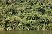 The dense jungle reaching the waterline of the island reserve Nosy Mangabe, Madagascar