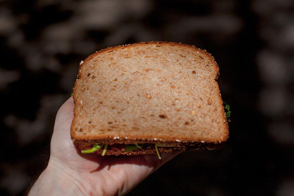 Arugula, Cheddar & Mustard sandwich at Letchworth State Park (mo££y) - OFF: Letchworth