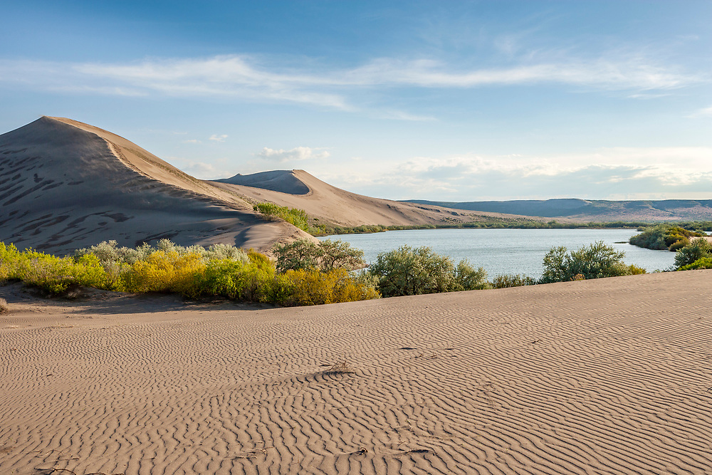 Bruneau Sand Dunes tallest sand dunes in the US are freshly Sculpted by the wind and weather in southern Idaho along the Snake River. Open Edition Numbered Prints and Licensing