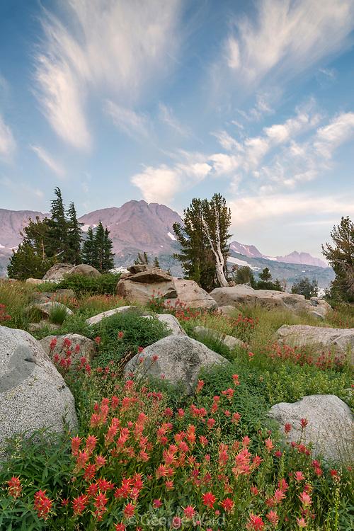 Round Top at Dawn with Clouds and Paintbrush, Mokelumne Wilderness, Eldorado National Forest, Alpine County, California