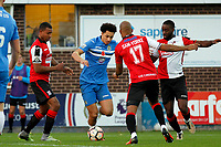 Lewis Montrose. Stockport County Football Club 2-4 Woking Football Club, Emirates FA Cup first round, 5.11.16.