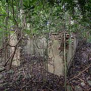 Par Force Ruins, St John, USVI