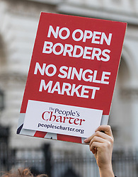 PLACE, January 14 2018. A few dozen protesters from 'The People's Charter' group demonstrate outside Downing Street demanding that the Brexit referendum result is respected following calls for a second referendum.  © Paul Davey