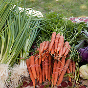 At the Wakefield Farmers Market, fresh vegetables are on display from Farmer Daves of Dracut, MA