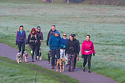 ©Licensed to London News Pictures 20/10/2019.<br /> Sidcup,UK. A group of dog walkers, A cold autumnal October morning at Footscray Meadows on the River Cray, Sidcup, South East London. Photo credit: Grant Falvey/LNP